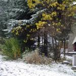 Chowańcówka - Zdjęcia domu 6